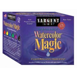 PAINT WATERCOLOR MAGIC LIQUID WATERCOLOR  6  1oz BOTTLES