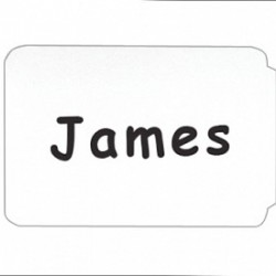 NAME BADGES  SELF STICK  C-LINE  BORDER  100 ct.   PLAIN