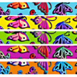 PENCIL FUN MUSGRAVE BUTTERFLIES