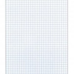 GRAPH PAPER PAD 4 SQUARE PER INCH   50 ct. ROARING SPRING