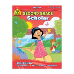 WORKBOOKS DELUXE 64 PG SECOND GRADE SCHOLAR
