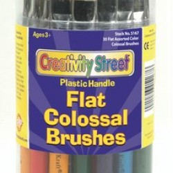 BRUSHES FLAT PLASTIC HANDLE COLOSSAL